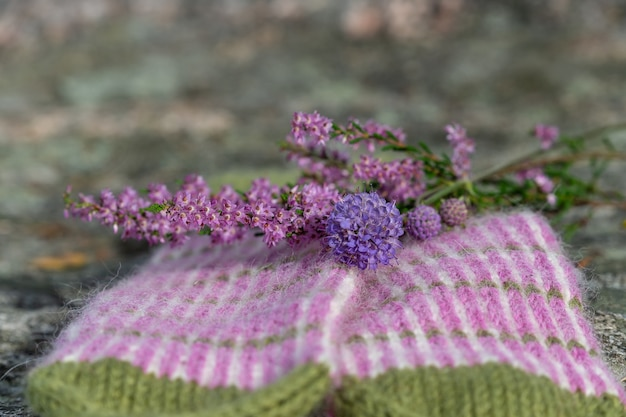 Selektive fokusaufnahme einer salzzederblume auf dem boden