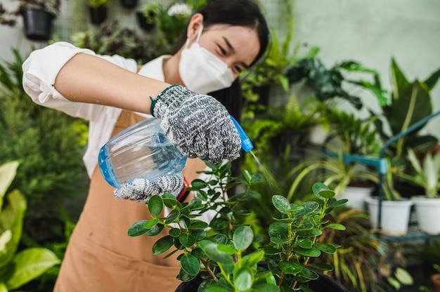 Selektiver fokus, asiatische gärtnerin, die gesichtsmaske und schürzenspray trägt, um grüne zimmerpflanze zu gießen, während sie aufpasst