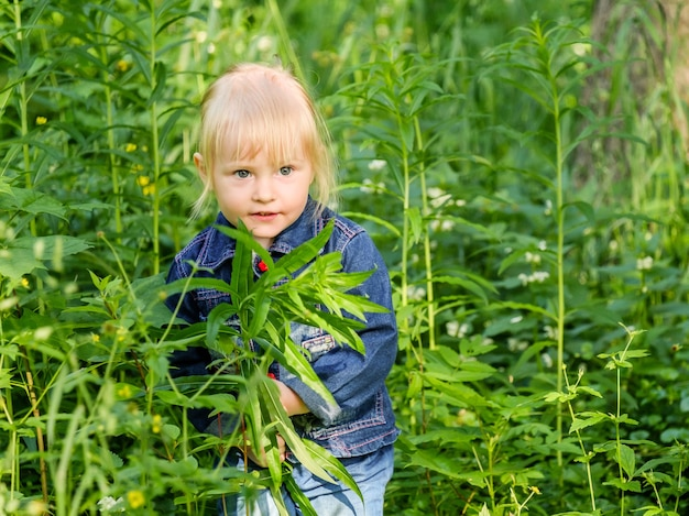 Selektiver fokus auf ein blondes kleines mädchen, das aus dem dichten grünen gras herausschaut