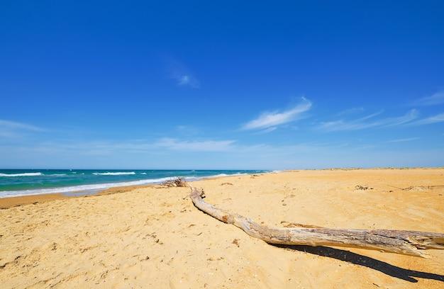 Selektiver fokus auf holzklotz, der auf dem sand liegt. sandiger wilder strand, blaues meer mit wolken und blauem himmel an der küste. schöne naturlandschaft des ozeans im freien,