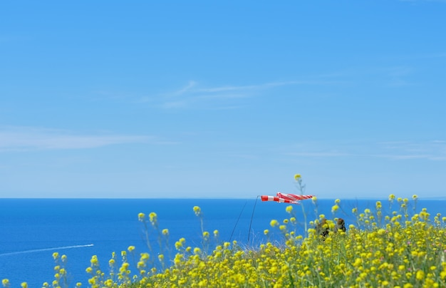 Selektiver fokus auf wehende flaggen des meeres. selektiver fokus, verschwommener himmel. die schönheit der natur, landschaft der schwarzmeerküste, horizontales foto