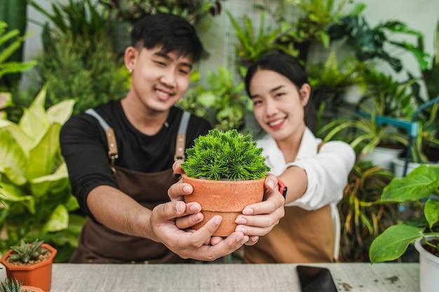 Selektiver fokus, hände eines jungen gärtnerpaares, das zimmerpflanze zum zeigen hält