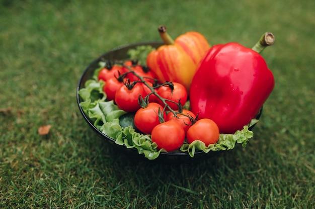 Selektiver fokus von gesunden roten und gelben pfeffern
