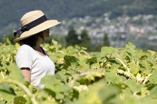 Selektiver fokusschuss der hübschen frau mit hut und weißem hemd, die in einem grünen pflanzenfeld stehen