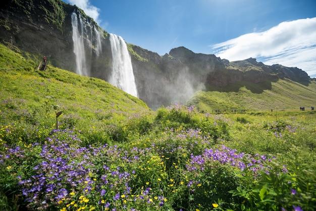 Seljalandsfoss-wasserfall in island im sommer