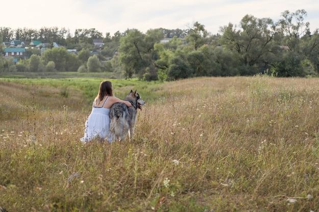 Seltene ansicht einer kaukasischen blonden frau im weißen kleid, die den alaskan malamute-hund im sommerfeld umarmt. reisen mit haustieren