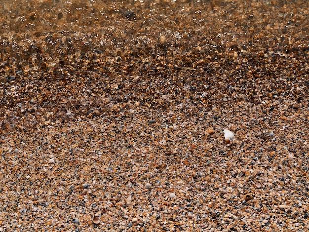 Senden sie muschelstrand nahaufnahme klar wasser hintergrund textur körner sand