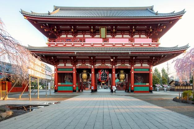 Sensoji-tempeltor mit kirschblütenbaum während der frühlingsjahreszeit am morgen an asakusa-bezirk in tokyo, japan.
