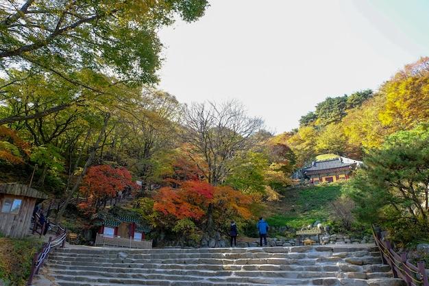 Seokguram-grottenwelterbe in gyeongju, südkorea