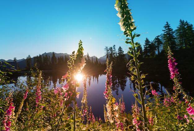 Serenity see in den bergen in der sommersaison.