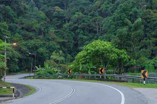 Serpentinen-asphaltstraße im asiatischen bergdschungel.