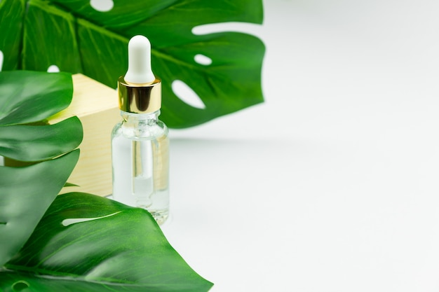 Serumflasche nahe palmblatt. trendiges schönheitsprodukt für junge haut.