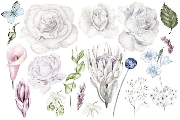 Set aquarellblumen und zweige wildblumen auf weißem hintergrund
