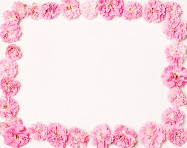 Set schöne rosafarbene blumen