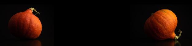 Set von hokkaido-kürbissen vor schwarzem hintergrund, bannerfoto mit kopienraum