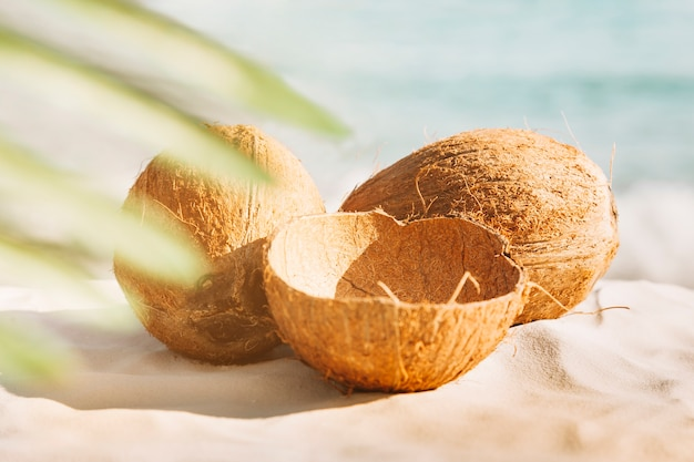 Setzen sie hintergrund mit kokosnüssen und palmeblatt auf den strand