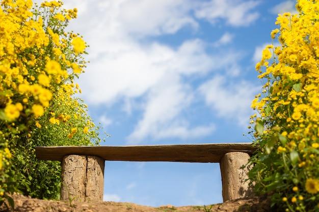 Setzen sie unter gelbem chrysanthemenfeld mit den weißen wolken und dem hintergrund des blauen himmels auf die bank.