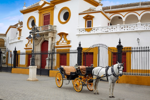 Sevilla real maestranza stierkampfarena toros