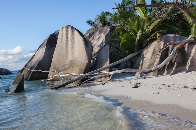 Seychellen source d'argent strand ebbe indischer ozean