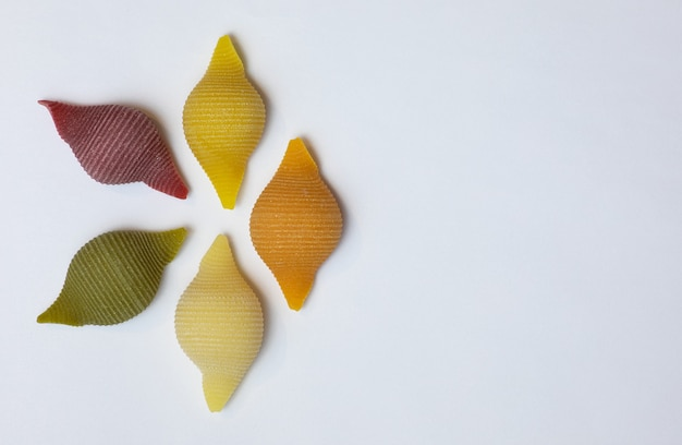 Shell nudeln in 5 farben und geschmacksrichtungen. rohe vollkornnudeln
