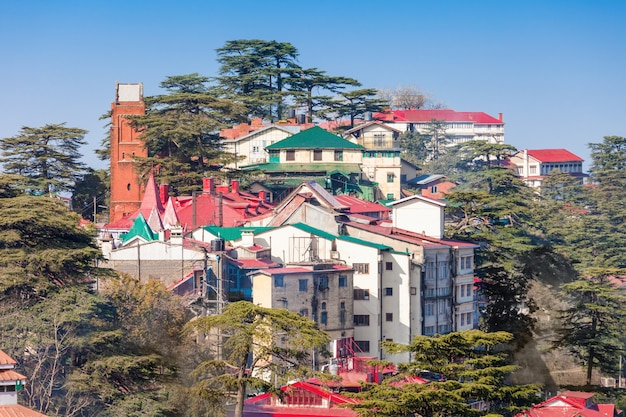 Shimla in indien