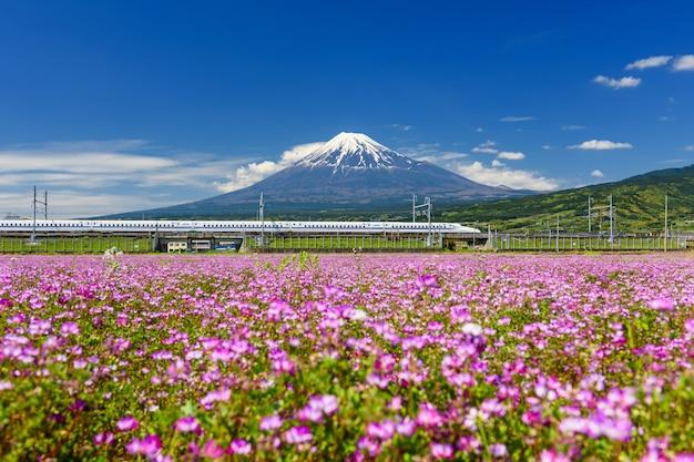 Shinkansen zug durch den berg fuji im frühjahr