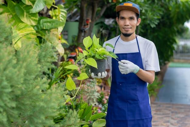 Shop zierpflanzenmanager mit topf im shop