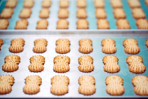Shortbread. herstellung von shortbread cookies in einer süßwarenfabrik. shortbread cookies auf einem metallgestell nach dem backen im ofen.
