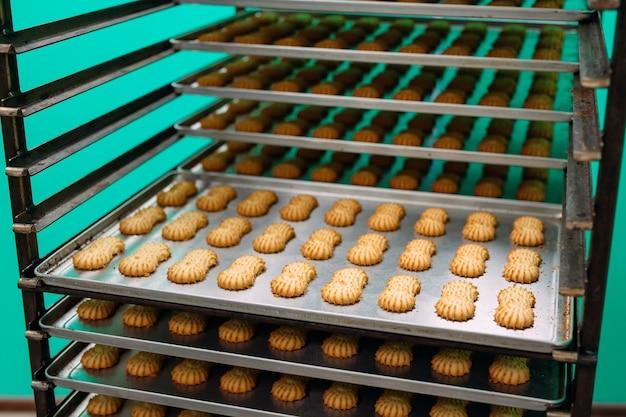 Shortbread. herstellung von shortbread-keksen in einer süßwarenfabrik. shortbread cookies auf einem metallgestell nach dem backen im ofen.