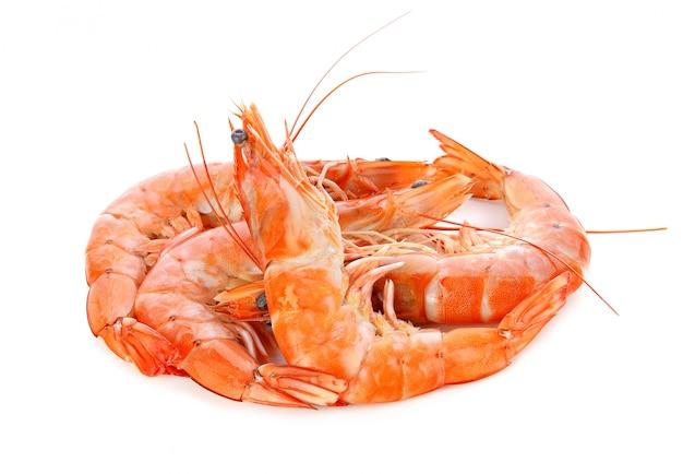 Shrimps auf einem weißen