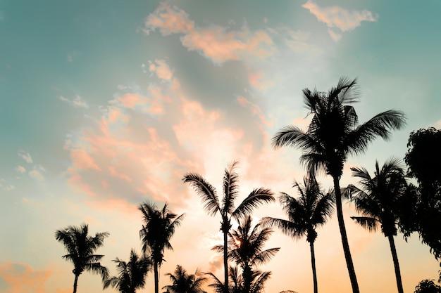 Silhouette palme auf dem tropischen strand (meer) mit einem sonnenuntergang im sommer - vintage farbfilter wirkung