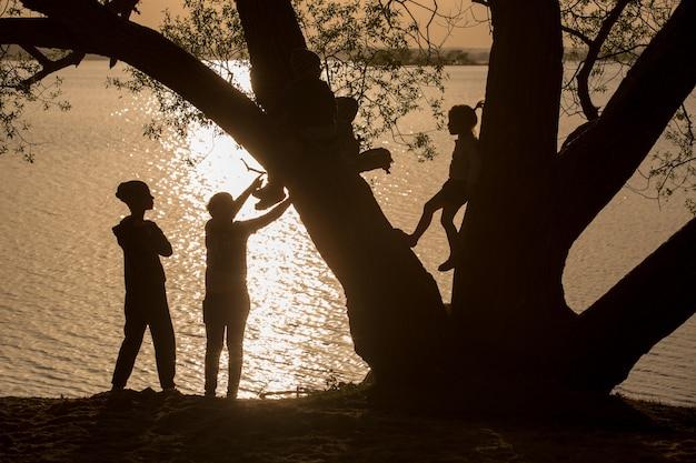 Silhouette von kindern, die auf einem baum eines sonnenuntergangs über dem see spielen.
