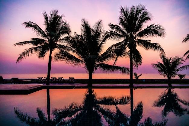 Silhouettieren sie kokosnusspalme um swimmingpool im freien