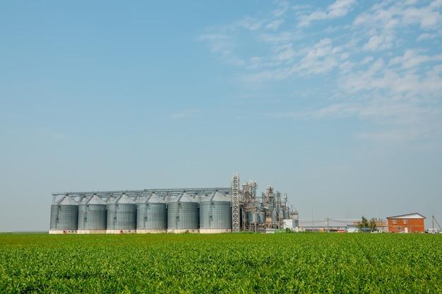Silos in einem gerstenfeld. lagerung der landwirtschaftlichen produktion. im feld