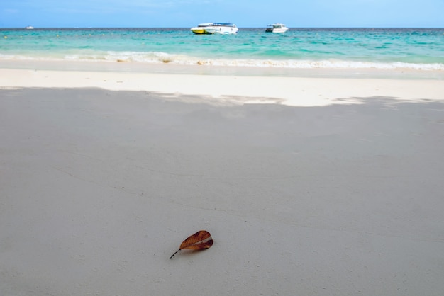 Similan islands, provinz phang nga schönes meer im süden thailands,
