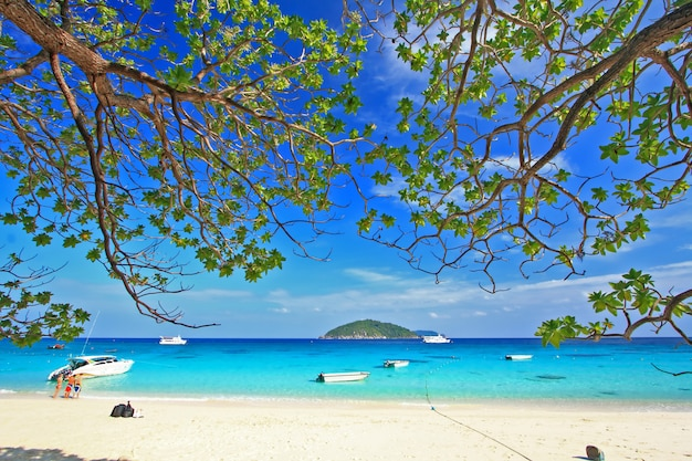 Similan national park, paradiesinsel südlich von thailand
