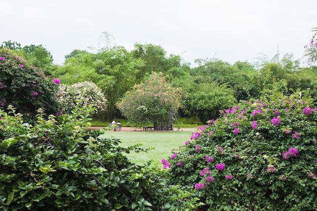 Singapur - 17. oktober 2014: der singapore botanic gardens ist ein 74 hektar großer botanischer garten in singapur.