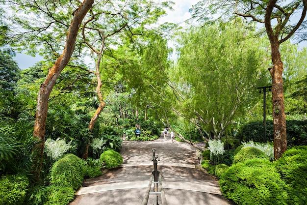 Singapur - 17. oktober 2014: the national orchid garden, gelegen in den botanischen gärten von singapur.