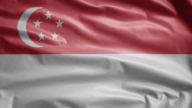 Singapurische flagge weht im wind