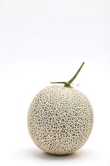 Single cantaloupe melone auf weiß