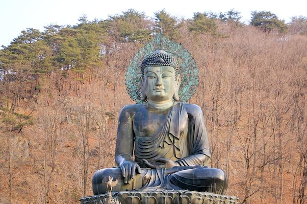 Sinheungsa tempel im seoraksan nationalpark. maßnahme auf koreanisch.