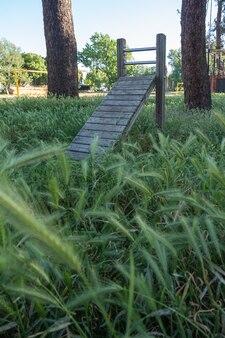 Situp-übungsbrett aus holz im waldpark Premium Fotos