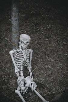 Sitzendes skelett lehnte sich auf baum im wald