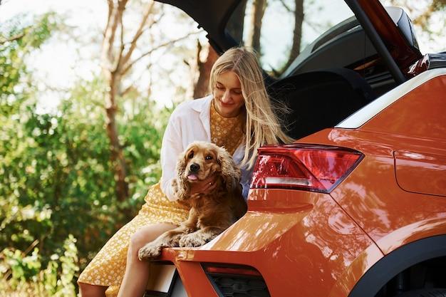 Sitzt hinten im auto. frau mit ihrem hund draußen im wald hat eine gute zeit.
