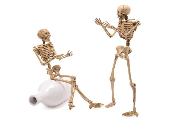 Skeleton talk grüßt sich