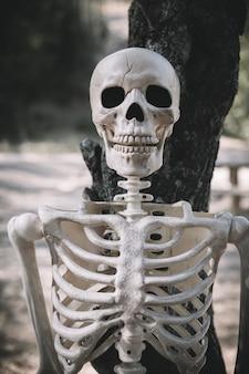 Skelett lehnte sich an baum