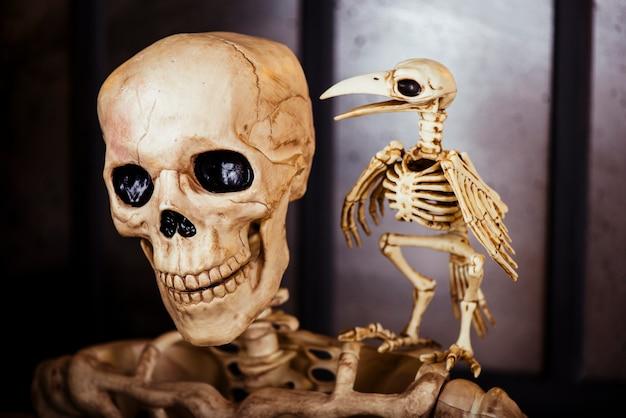 Skelette in der komposition