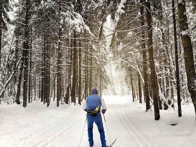 Skifahrer skifahren zwischen schneebedeckten tannen im wald. wintersport und aktiver gesunder lebensstil