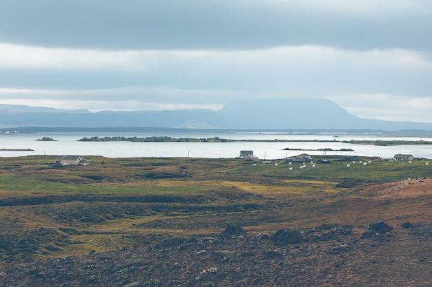 Skutustadir im gebiet des sees myvatn, island