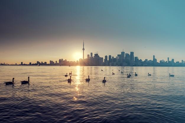 Skyline der stadt toronto bei nacht, ontario, kanada